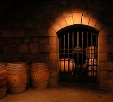 old winecellar by zinchik