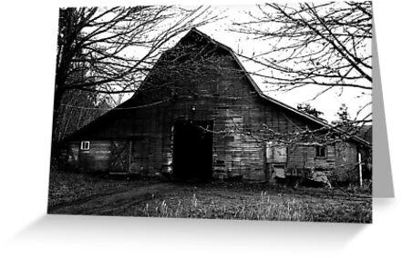 Old Creepy Barn by arawak