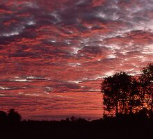 Outback Sky by Terry Everson
