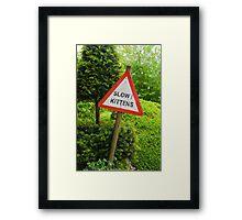 Slow Kittens! Framed Print