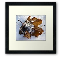 An overlap of Seasons Framed Print