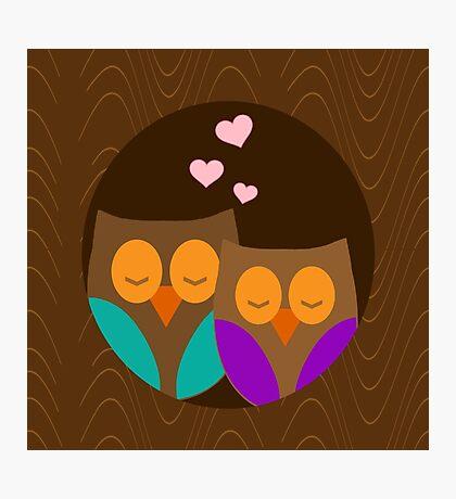 Romantic Owls Photographic Print