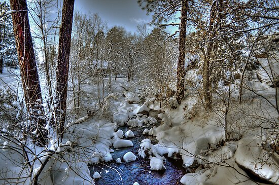Miller Creek by Diana Graves Photography