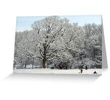 Sledding Waveny Hill Greeting Card
