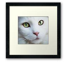 I HAVE LEARNED Framed Print