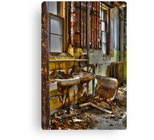 Lead Sinks Canvas Print
