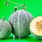 Planting Cantaloupe Melons miniature art by Paul Ge