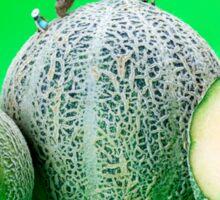Planting Cantaloupe Melons miniature art Sticker