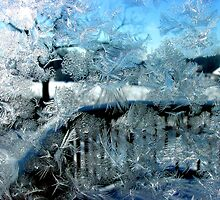 Frost by Christopher Herrfurth