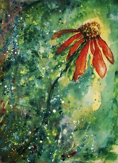 Echinacea by Robin Monroe