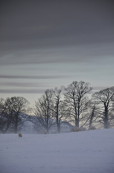 Lakedistrict Winter Landscape by Jacqueline Wilkinson