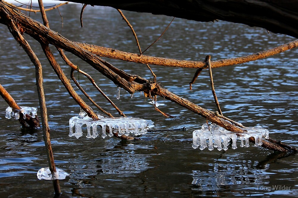 River Ice - Little Miami River by Tony Wilder