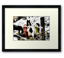 Mountain Ponies Framed Print