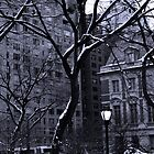 """Central Park Lamppost by Christine """"Xine"""" Segalas"""