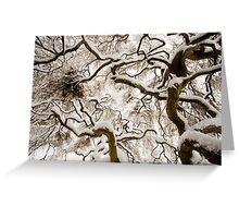 ice nest Greeting Card