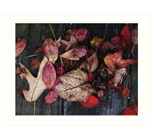 Collage Of Autumn Red Art Print