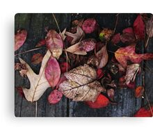 Collage Of Autumn Red Canvas Print