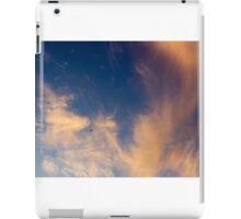 Sunset Sylphs dwarf Jetiner iPad Case/Skin