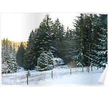 Abandoned cottage in winter Poster