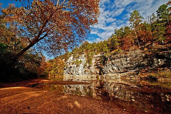 Bluff of the Buffalo National River by Lisa G. Putman
