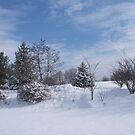 looking for snowmen by katpartridge
