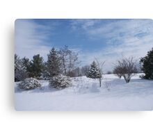 looking for snowmen Canvas Print