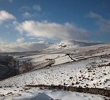 Penyghent From The Head Of Penyghent Gill by SteveMG