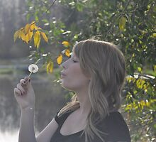 The Dandelion Game by Lisa  Morris