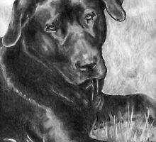 Barney by clairehanna