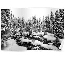 soft winter snow in northern land Poster