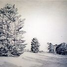 Last Stand of the Pines by Nestor