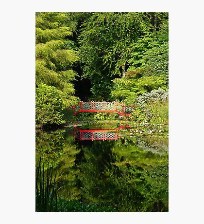 Portmeirion Reflections Photographic Print