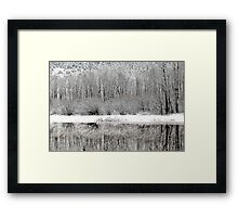 Winter Whites  Framed Print