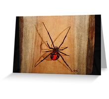 Australian Redback Greeting Card