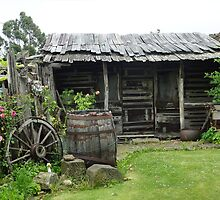 Cottage Shed - Invermay, Tasmania by RainbowWomanTas
