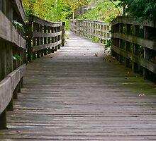 long boardwalk by Mark de Jong