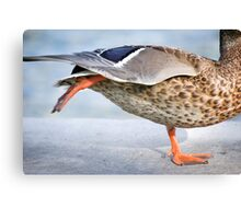 Fowl Ballerina Canvas Print