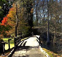 Fall and Winter by Savannah Gibbs