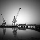 Twin Cranes by Robert Radford