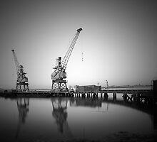 Twin Cranes by Robert Radford