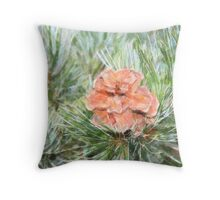 Pine Cone at Rest Throw Pillow
