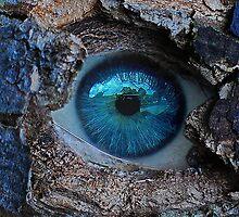 Ever watching nature by Sarah Horsman