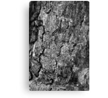 Black and white cracks Canvas Print