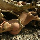 Le pied d'Alice by Auquier