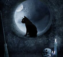 The Witches Cat  by photo-kia