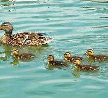 Following Mom's Lead by Ryne R Slater