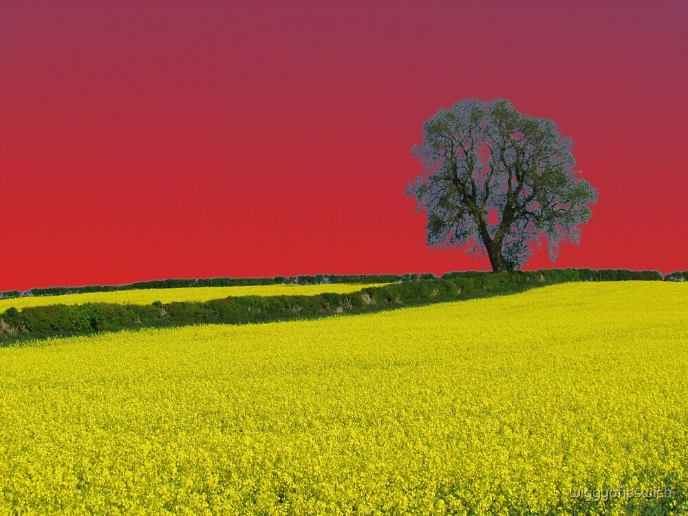 Oak Tree Landscape ( Red ) by wiggyofipswich