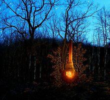 Hillbilly Fireplace by wiscbackroadz