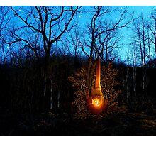 Hillbilly Fireplace Photographic Print