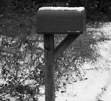 Waitin' on the Mail. . . by Karen L Ramsey